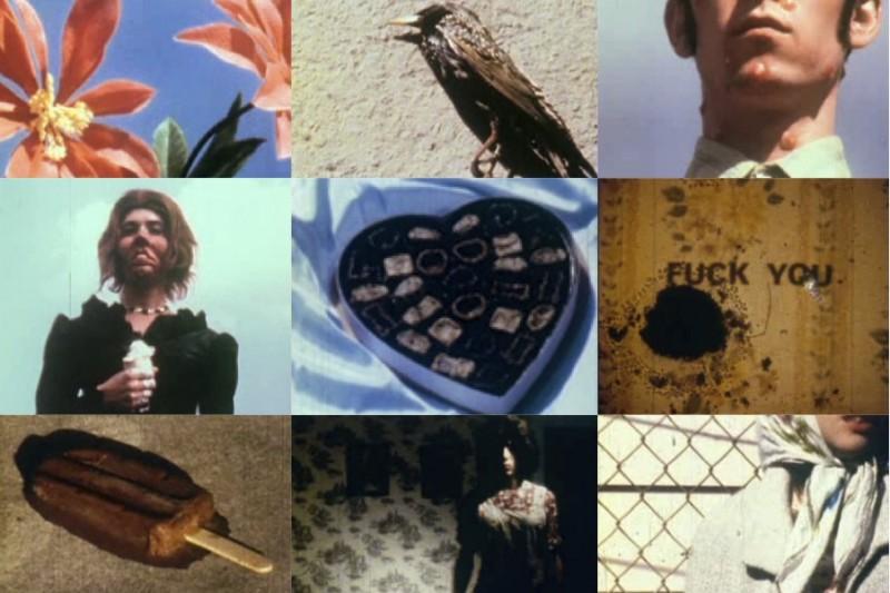 Tom Rhoads | Three Films